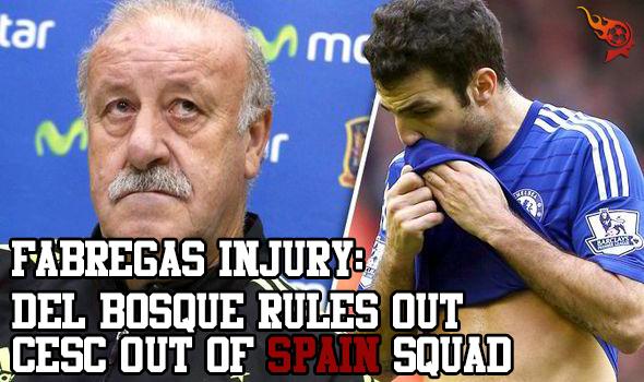 Spain-Chelsea-Diego-Costa-Cesc-Fabregas-534579